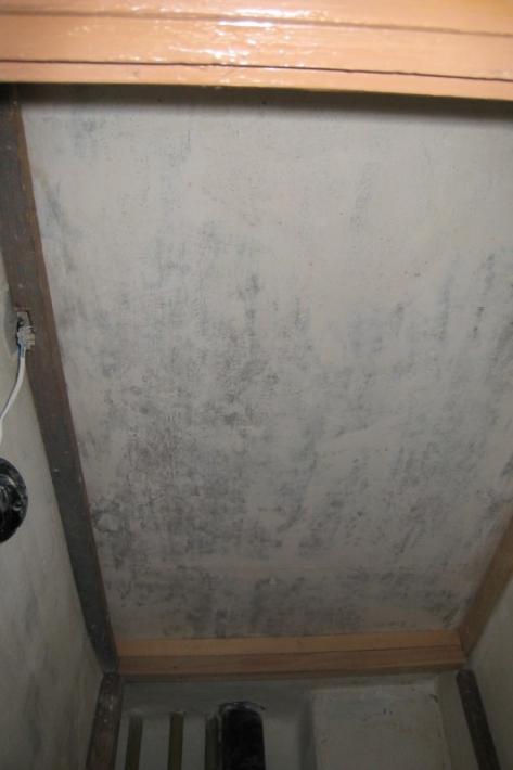 Отделка туалета панелями пвх своими руками